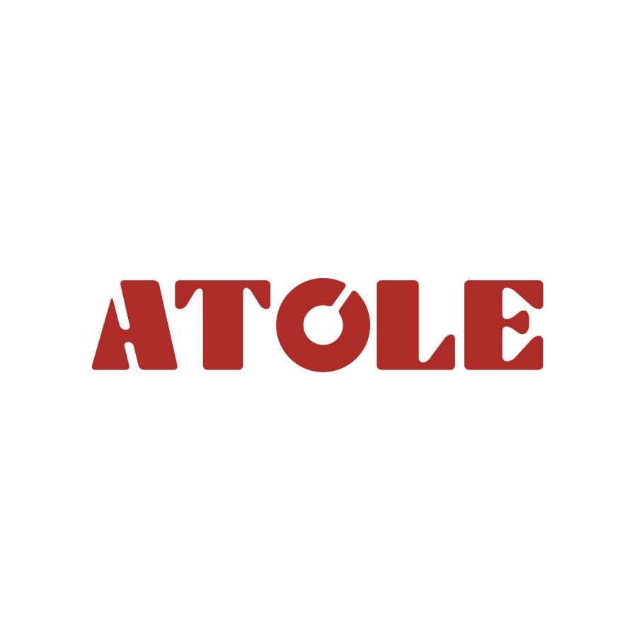 ATOLE <br /><span>Gaine Technique Logement, Coffret d'Habillage, Produits pour la Plomberie</span>
